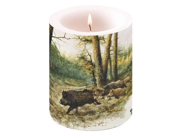Kerze Sauen
