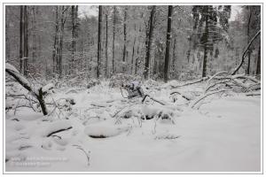 Jäger in Schneetarn