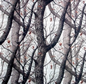Tarnmuster Realtree Hardwoods Snow®
