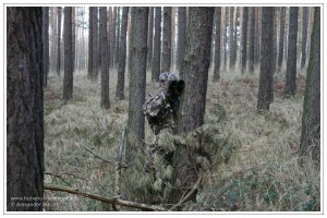 Gut getarnter Jäger glast das Gebiet vor ihm ab