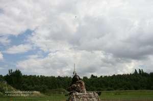 Jäger schießt mit Benelli Black Eagle II aus Hitman Layout Blind im Tarnmuster Realtree Max4®