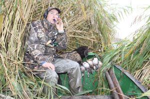 Jäger sitzt im Schilf und benutzt Entenlocker