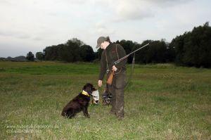 Wachtelhund sitzt vor Jägerin mit apportierter Ente