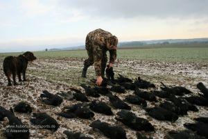 Jäger legt Strecke mit Rabenkrähen