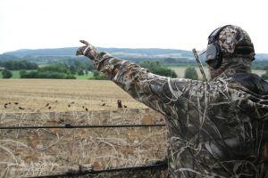 Nicht immer sieht der Hund die geschossene Krähe fallen - lässt er sich per Handzeichen einweisen, erleichtert das die Verlorensuche