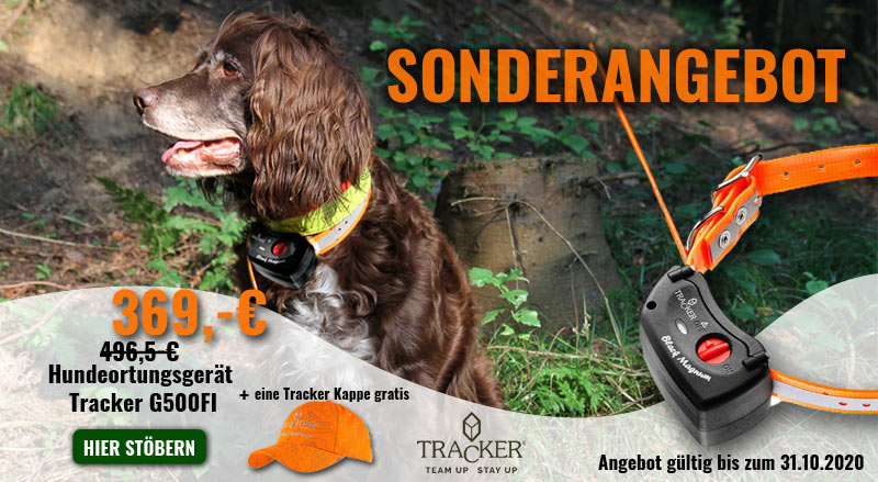 Bild eines Jagdhundes und des Tracker-G500-FI-Hundeortungsgerätes (mit Gratis-Jagdcap)